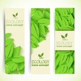 El diseño plano de ecología, ambiente, verde limpia Imagen de archivo libre de regalías