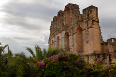 El Djem side view Royalty Free Stock Photos