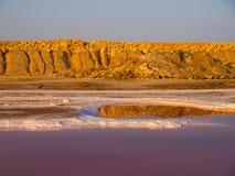 EL Djerid de Chott, Tunísia imagem de stock royalty free