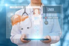 El doctor comprueba la salud del hígado Foto de archivo