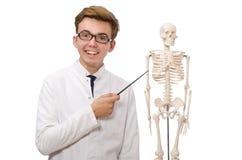 El doctor divertido con el esqueleto aislado en blanco Imágenes de archivo libres de regalías