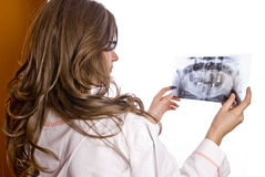 El doctor Examining X-Ray fotos de archivo