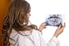 El doctor Examining X-Ray imagen de archivo