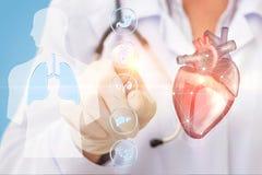 El doctor hace clic en el icono del corazón Fotografía de archivo libre de regalías