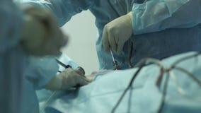 El doctor hace una mujer una operación almacen de video