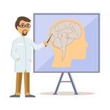 El doctor Showing Human Brain Flat Design Imagenes de archivo