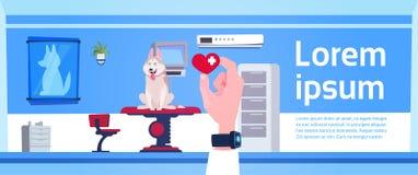 El doctor veterinario Hand Holding Pill sobre concepto del interior de la oficina de la clínica del veterinario libre illustration
