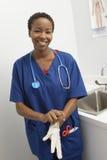 El doctor Wearing Disposable Glove Imagen de archivo