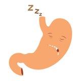 El dormir del estómago Fotos de archivo