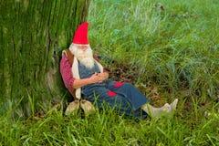 El dormir del gnomo del bosque Fotografía de archivo libre de regalías
