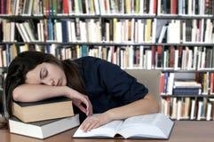 El dormir en los libros Imágenes de archivo libres de regalías
