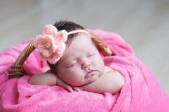 El dormir recién nacido con la flor hecha punto en la cabeza Bebé infantil que miente en la manta rosada en cesta Retrato lindo d Imágenes de archivo libres de regalías