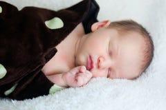 El dormir recién nacido en una manta Imagenes de archivo