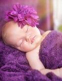 El dormir recién nacido lindo de la muchacha Fotos de archivo libres de regalías