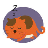 El dormir rojo del gato Imagen de archivo