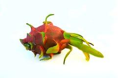 El drag?n da fruto brit?nico del espino del undatus de Hylocercus Y Rose fotos de archivo