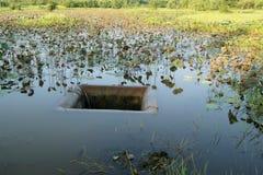 El dren tiene un pedazo de la ruina hierba-cubierta Imagen de archivo
