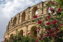 El-driftstopp colosseum, Tunisien Arkivbild