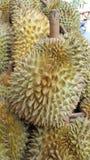 El Durian es rey de la fruta Foto de archivo