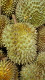 El Durian es rey de la fruta imagenes de archivo