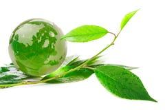 El eco del concepto del globo Imágenes de archivo libres de regalías