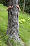 El ecologista de Hugger del árbol, abrazo salva el ambiente Imagenes de archivo
