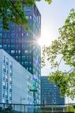 El edificio de oficinas moderno con los árboles y la luz del sol señala por medio de luces Foto de archivo libre de regalías