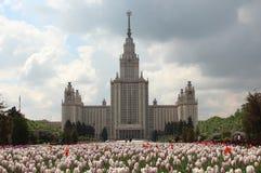 El edificio principal de la universidad de estado de Moscú y una cama de flor de tulipanes imagenes de archivo