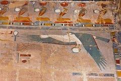El egipcio arruina el vuelo del halcón Fotos de archivo