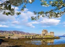 El Eilean Donan Castle con el árbol de la primavera en montañas de Escocia Imagenes de archivo