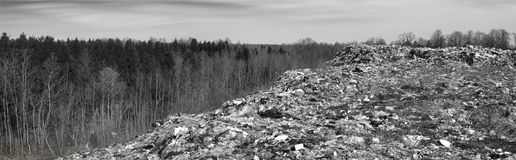 El eje enorme de la ruina del tsunami ataca el bosque fotos de archivo libres de regalías