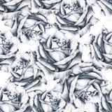 El ejemplo blanco y negro subió las flores Lápiz de dibujo monocromático del trabajo hecho a mano Modelo inconsútil en el estilo  libre illustration