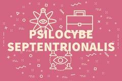 El ejemplo conceptual del negocio con el psilocybe de las palabras septen stock de ilustración