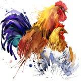 El ejemplo de la familia de los gráficos, del pollo y del gallo de la camiseta del pollo y del gallo con la acuarela del chapoteo libre illustration