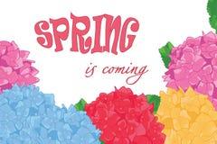 El ejemplo del vector de la primavera está viniendo ilustración del vector