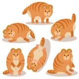 El ejemplo del vector del gato en diversas actitudes fijó en el fondo blanco foto de archivo libre de regalías