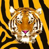 El ejemplo y las ilustraciones de una cabeza del tigre en piel texturizan el fondo stock de ilustración