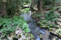 El el pequeño río pero tan muy importante para la vida Fotografía de archivo