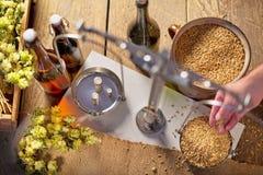 El elaborar casero de la cerveza El hombre pesa la cebada Fotografía de archivo libre de regalías