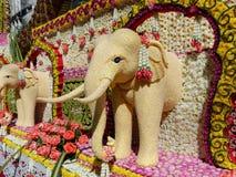 El elefante se hace de las semillas de sésamo Chiang Mai Flower Festival, Tailandia Imagenes de archivo