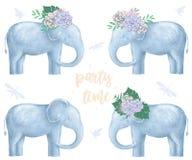 El elefante y las flores encendido van al animal digital del clip art listo de la tarjeta del diseño del estilo divertido del ver stock de ilustración