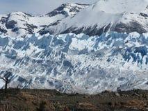 El emigrar en el glaciar de Perito Moreno Imagen de archivo