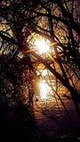 El enarbolar de la salida del sol imagenes de archivo