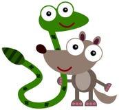 El enemigo y el amigo de la mangosta Imagenes de archivo