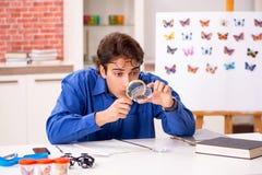 El entomólogo del estudiante que estudia la nueva especie de mariposas foto de archivo libre de regalías