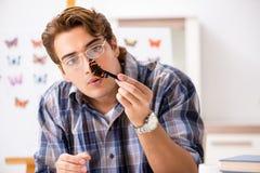 El entomólogo del estudiante que estudia la nueva especie de mariposas fotografía de archivo