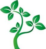 El entorno verde del árbol rodea el logotipo Imágenes de archivo libres de regalías