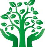 El entorno verde del árbol rodea el logotipo Fotografía de archivo libre de regalías