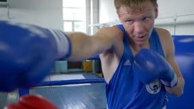 El entrenamiento del boxeo, los combatientes profesionales realiza los puños de los golpes en guantes durante competencias de dep almacen de metraje de vídeo