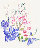 El entusiasmo es intrépido y libre de las flores, las hojas y florece diseño del arte Fotografía de archivo